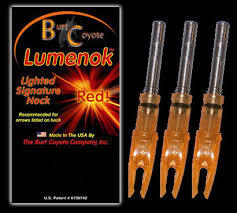 BURT COYOTE LIGHTED KNOCKS